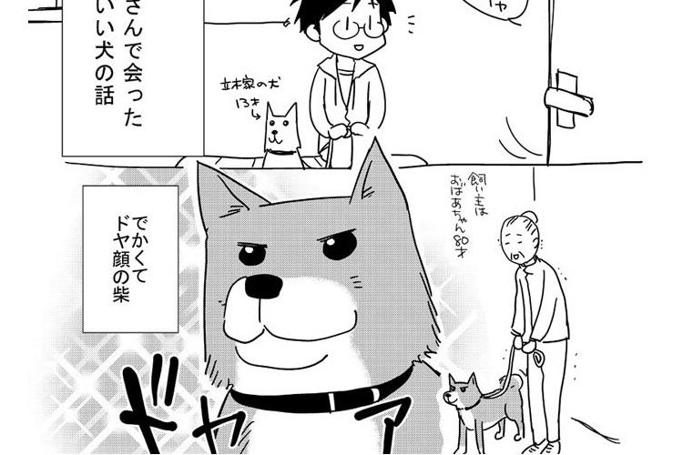 【漫画】ドヤ顔の柴ワンコが動物病院で豹変!?大好きなおばあちゃんがリードを離すと…