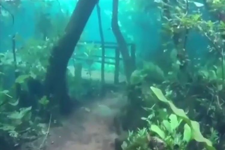 世界一の透明度で知られるブラジルのプラタ川が氾濫→ハイキングコースが美しい水の世界に!