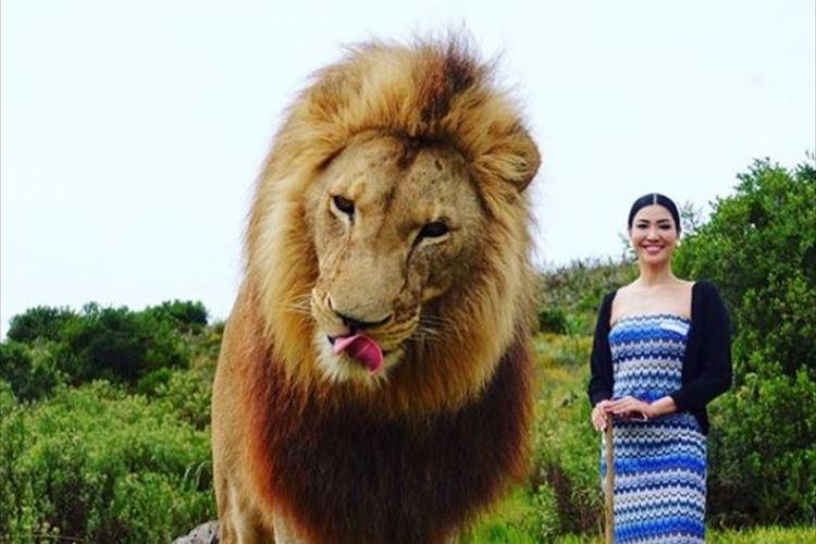 モデルのアンミカがライオンの至近距離で驚きのツーショットを公開!【合成ではありません】