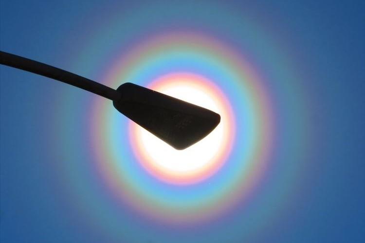 """""""花粉光環""""という自然現象…綺麗だけど花粉症の方にとっては魔のサークル!?"""