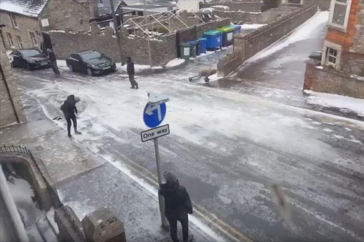 【動画】凍結したツルッツルの路面に苦戦しまくる人々の様子がジワる