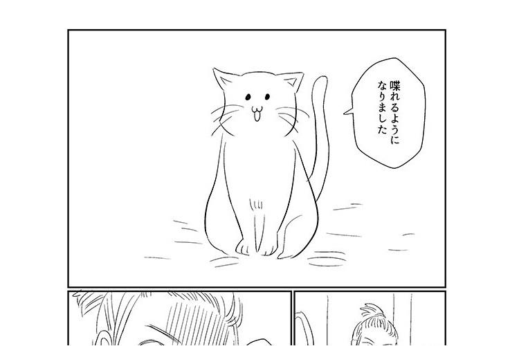 猫と話せたらなんて言いたい?エイプリルフールになぞらえた漫画に感動と共感!