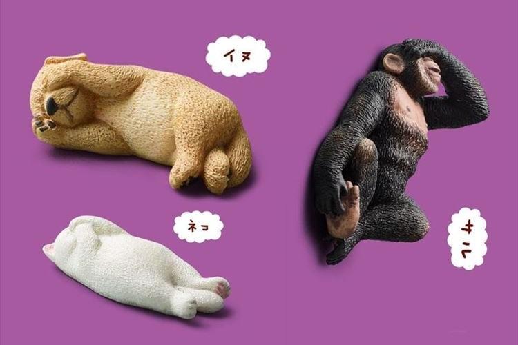 動物たちが顔をおさえて眠る!?ユニークなカプセルトイ「みないで寝」が登場!