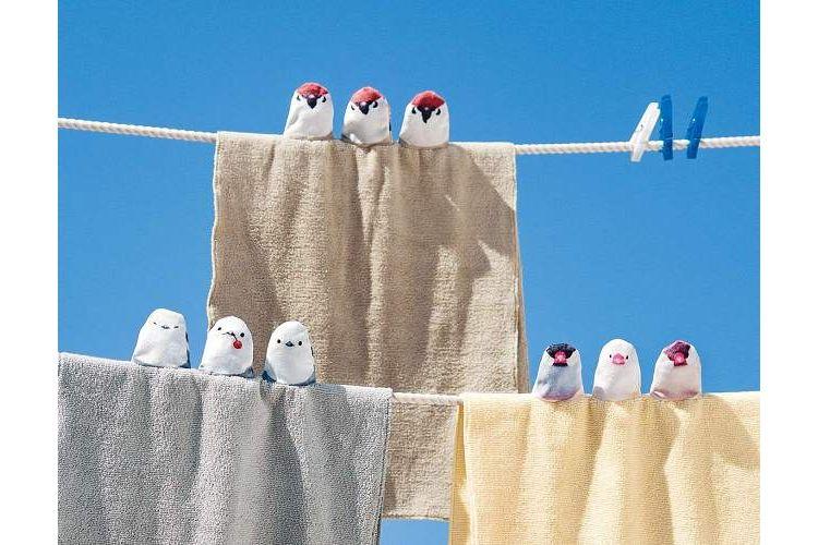 小鳥が仲良くちょこんっ♪思わず笑みがこぼれる可愛すぎる『タオル』が登場!