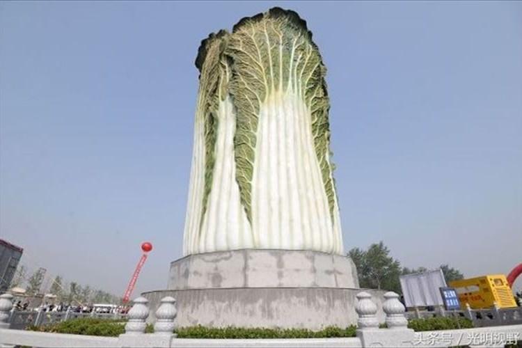 あまりにも斬新!中国で高さ20メートル、重さ12トンの白菜が建つ!