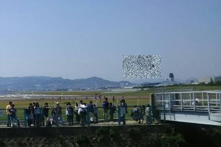 飛行機を撮影しに行ったら、スズメが写っていたが…「一瞬、サンダーバード2号に見えました」