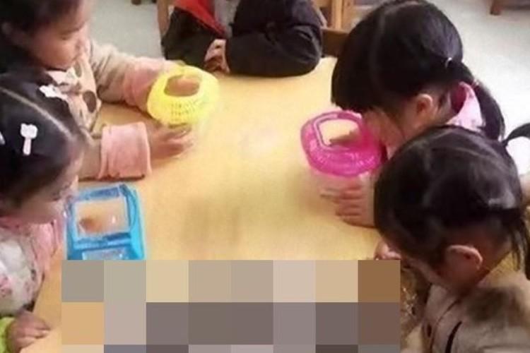 学校の先生「家にある魚を持ってきてください」→とある生徒が持ってきたものは…
