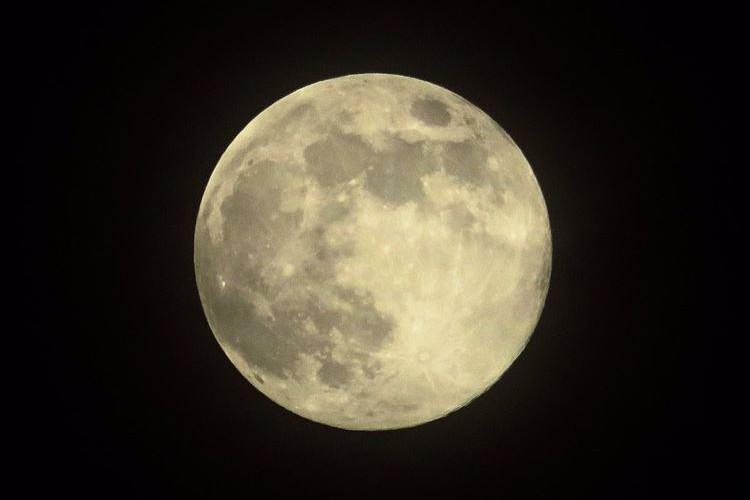 5月29日に現れた満月『フラワームーン』が話題に!月光環や月暈もほんのり見えてキレイ