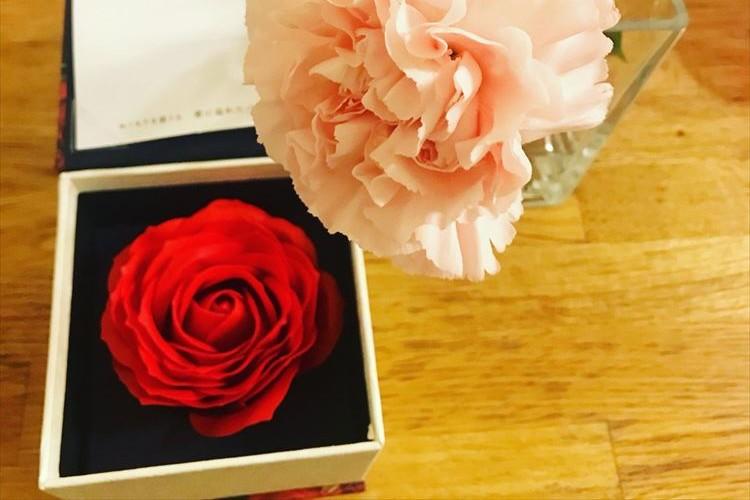 母の日に貰ったバラの入浴剤、お風呂に入れてみたら…まさかの事件現場みたいになった!