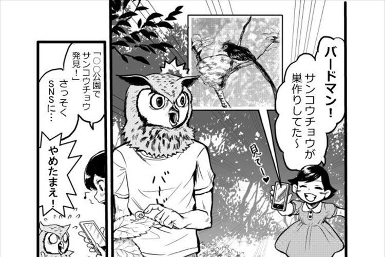 """""""巣を作っている鳥を撮ってはいけない理由""""を表現した漫画に多くの反響"""