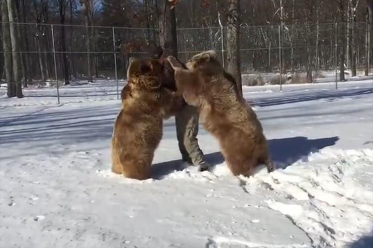 【貴重映像】飼い主さんが帰宅して大喜びのクマ…抱きついてじゃれ合う様子が微笑ましい♪