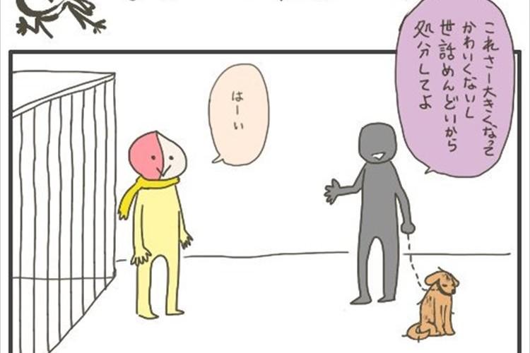 「世話が面倒だから処分してよ」保健所をテーマとした漫画の結末に共感の声