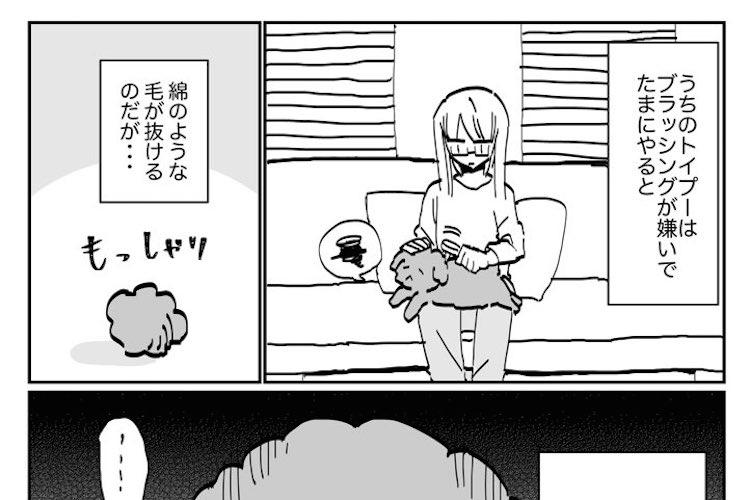 犬も人間と一緒?抜け毛を気にしているトイプードルを描いた漫画がかわいいと話題に