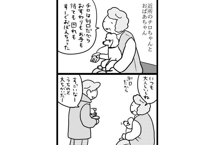 【漫画】ワンコを愛しすぎているおばあちゃんがかわいい!でもリードは離さないでね。
