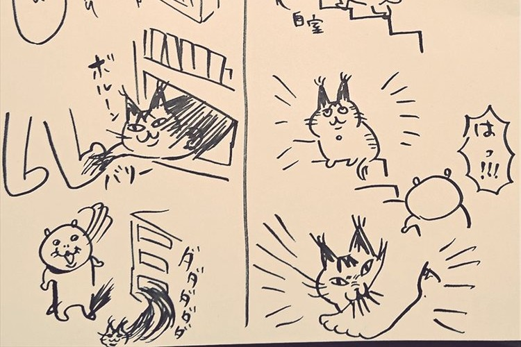 シュールで理不尽な猫と飼い主さんとの日常…一方的にやられても飼い猫への愛は永遠