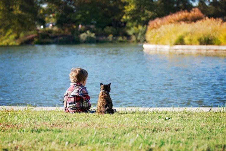 男の子とニャンコの絆が伝わってくる1枚の写真に反響「きっとお互いを信頼しているんだね」