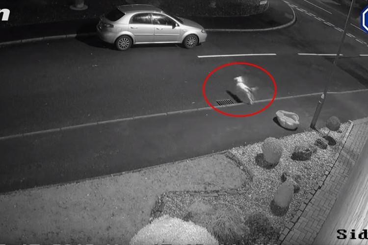 聖なる夜に公開された悲しい映像。捨てられた事に気づかない犬が飼い主を追いかける姿に涙