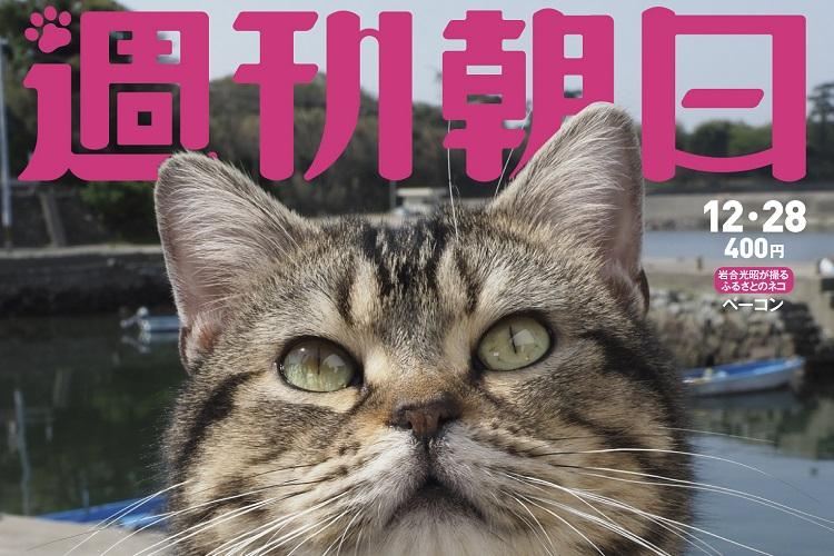 大好評の「週刊朝日 丸ごとネコ特集」が再登場!猫に埋め尽くされちゃう1冊