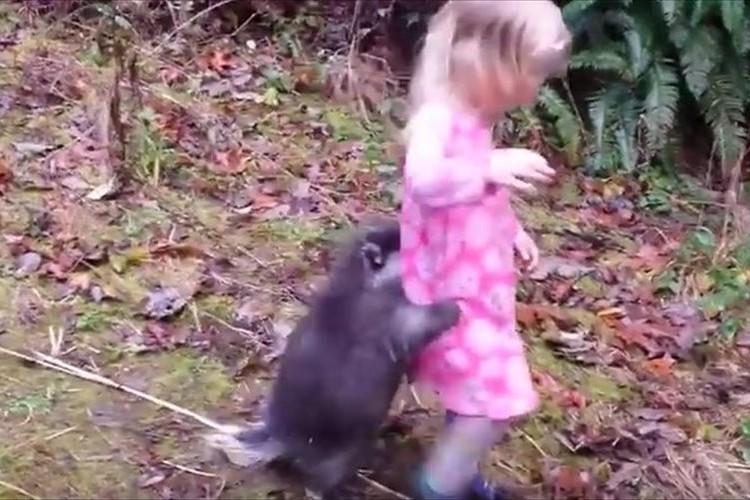意外と人懐っこい!?突然の雨におびえて飼い主の女の子に抱きつくヤマアラシ…オチも可愛らしい
