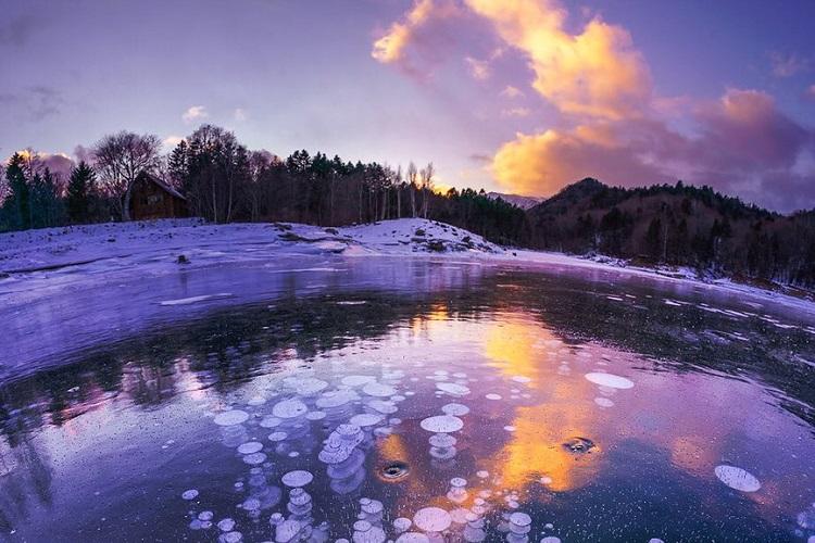凍った湖に神秘の模様…「氷の泡」を閉じ込めた自然の造形が美しい