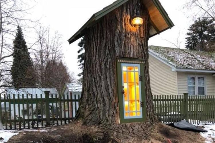 樹齢110歳以上の巨大な木 撤去する予定だったが素敵な図書館となって残されることに!
