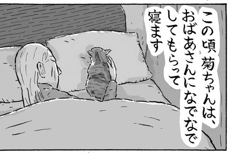 ほのぼのしよう!三毛猫の菊ちゃんと、おばあさんとの生活を描いた漫画「なでなでスヤスヤ」にほっこり!