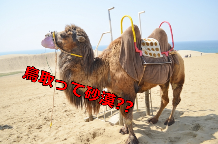 鳥取県ってどんなとこ?砂漠?島根?鳥取出身あるあるを紹介!