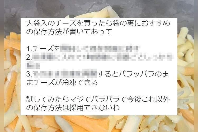 こりゃ簡単だ!チーズをパラパラの状態で冷凍保存するライフハックが話題に