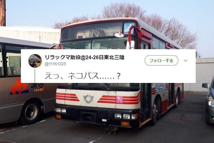 あなたは気がついた…?この一見普通のバスが『ネコバスだ』と話題になっている理由