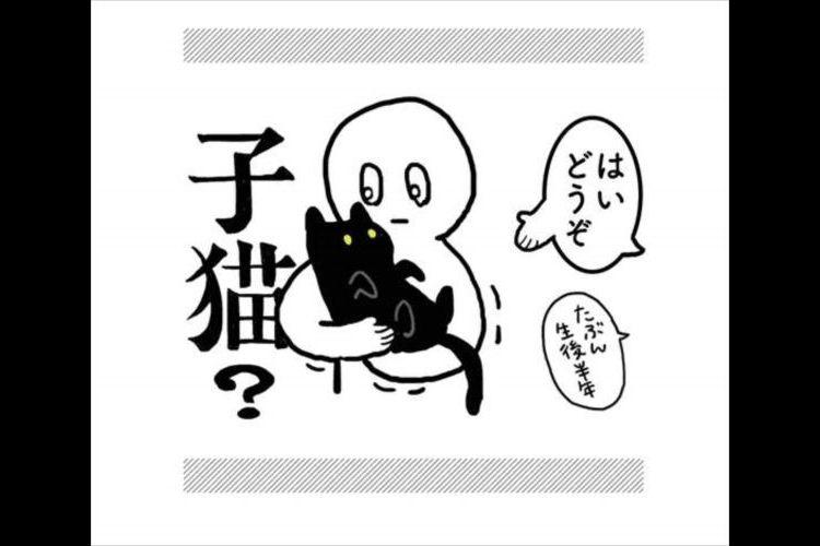 猫ってこんな生き物だっけ?『はじめて猫を飼ったとき』の漫画が初々しくてイイ