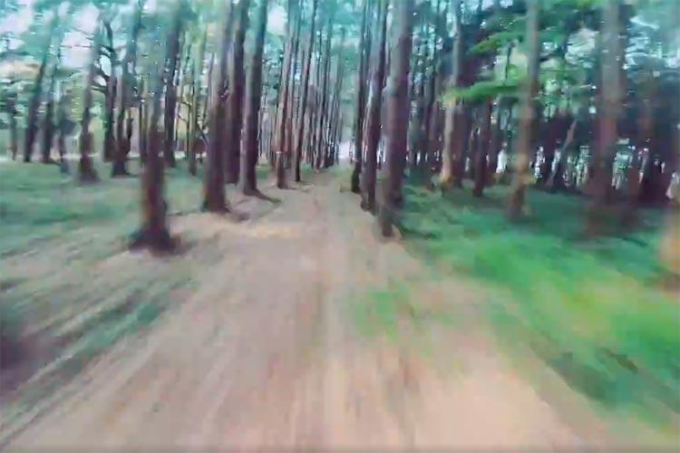 """時速100キロのド迫力!""""ドローン""""が森の中を自由自在に飛ぶ動画に反響「まるでスター・ウォーズ」"""