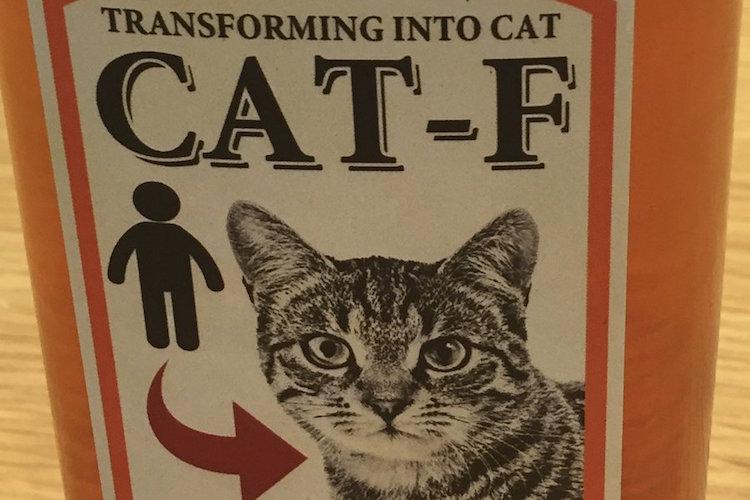 クオリティー高っ!!『ネコになれる薬』を娘におねだりされたパパ、そのリクエストに全力で応える