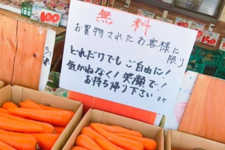 水菜と春菊が8円、キャベツは1箱100円!熊本にある八百屋が激安すぎて言葉を失う!