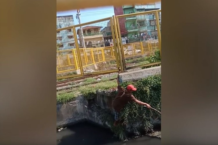 運河に落ちてしまい、キャンキャンと悲鳴を上げていた子犬。男性が木の枝を使って救助を試みると…