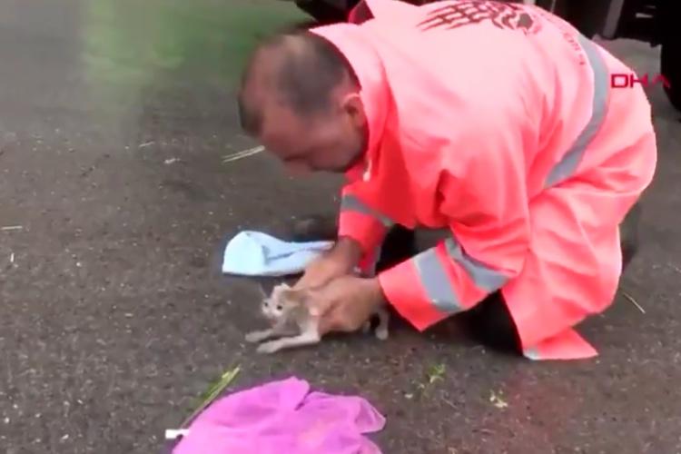 洪水で意識を失った小さな野良猫の救出劇!懸命に心肺蘇生術を施す男性の姿に感動...