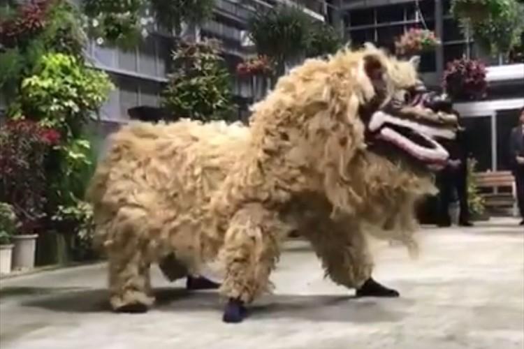「ふさふさしてるし生物感ヤバい」沖縄の獅子舞がトラウマになりそうなレベル!?と話題に