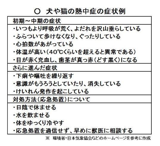 nettyuusyou_inuneko
