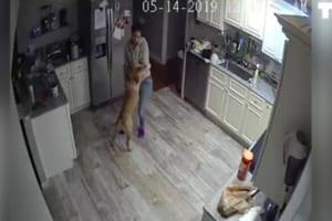 出張中に自宅の監視システムが作動!スマホで監視カメラを確認すると・・・そこには愛犬と彼女の姿が!