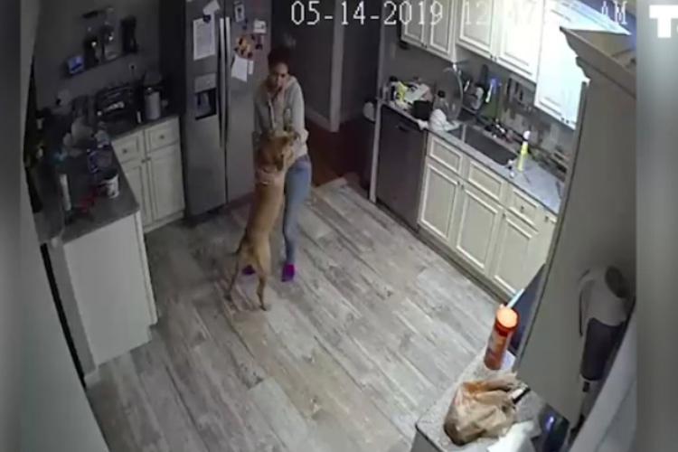 出張中に自宅の監視システムが作動!スマホで監視カメラを確認するとそこには愛犬と彼女の姿が!