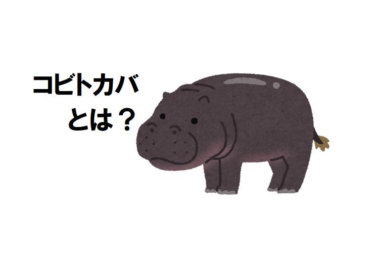 世界三大珍獣「コビトカバ」の生態とは!?赤ちゃんに会える日本の動物園も紹介!