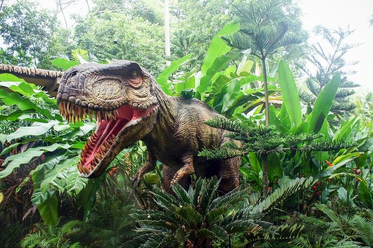 図鑑によって恐竜の色が違うのはなぜ?その衝撃の答えと恐竜の色の秘密に迫る