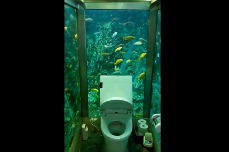 まるで水族館!?海の近くにあるお食事処のトイレを撮影した動画に反響「ソワソワしそう」