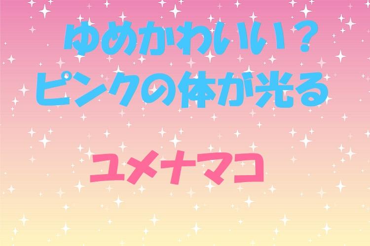 深海に棲むピンクの体で光る「ユメナマコ」がゆめかわいい!?