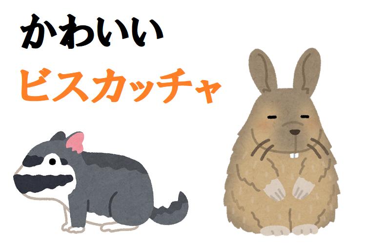 ブサカワ珍獣「ビスカッチャ」はウサギじゃないよ、ネズミだよ!ペットとして飼育できるの?