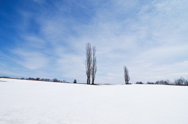 北海道はもうすぐ春