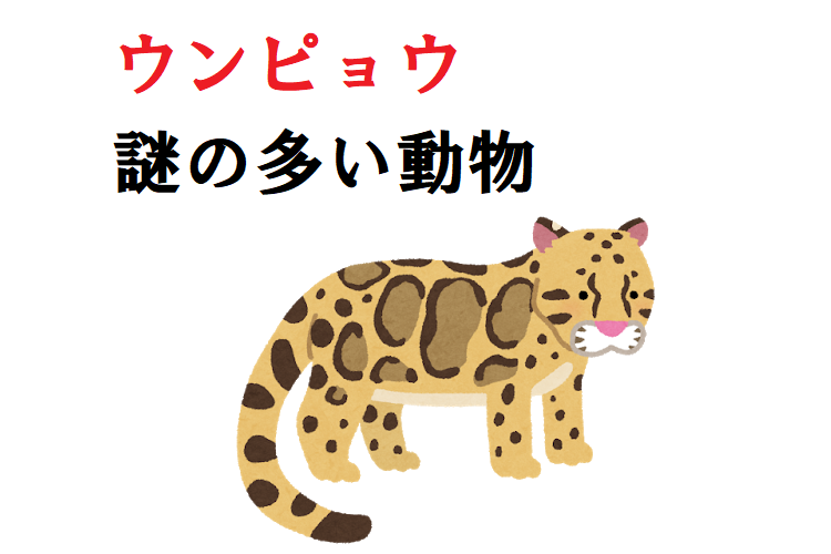 ウンピョウってヒョウ?トラ?アジアに住むネコ科の生き物!日本の動物園で会える!