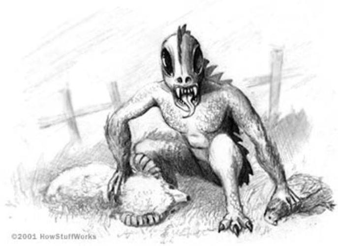 聞いたことあるけど知らない生物「チュパカブラ」ってどんなやつ?アルマジロが正体って本当?
