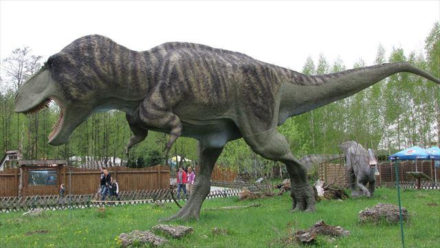羽毛の生えた恐竜