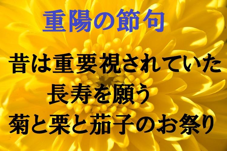 【重陽の節句】耳慣れない五節句のひとつだが、本来は長寿を願う大切な行事だった!!