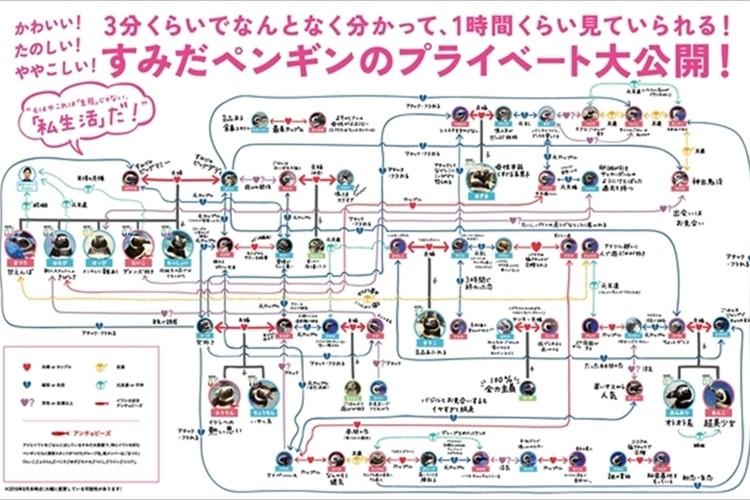 恋愛模様が凄すぎる(笑)SNSで話題になった「すみだ・京都水族館のペ ンギン相関図 」最新版が登場!